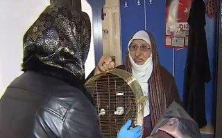 Fatma Nine'nin yalnızlığına torunu çözüm buldu
