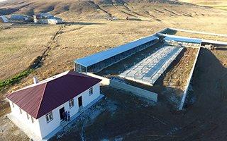 Karayazı'ya canlı hayvan pazarı yapılıyor