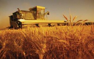 Erzurum'da Tarım paneli düzenlenecek