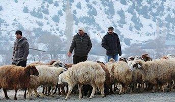 Akşarlılar kapalı hayvan pazarı istiyor