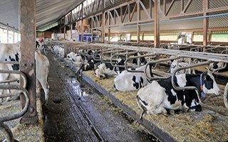 Erzurum'da 95 çiftçiye proje müjdesi!