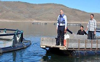 Erzurum'dan milli ekonomiye balık dopingi!