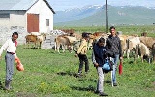 Çoban öğrenciler okul yolu gözlüyor
