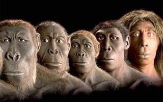 Evrim Teorisi yeni müfredatta yok