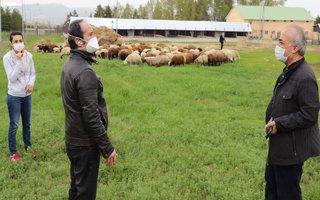 Gıda ve hayvancılığa bilimsel yaklaşım