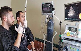BEAH'ta Bronkoskopi Yöntemi İle Erken Tanı
