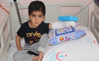Küçük Şiar sağlığına kavuştu