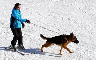 Kayakçı Palandöken'de köpeğiyle kaydı