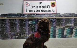 Erzurum Polisinden kaçak sigara operasyonu