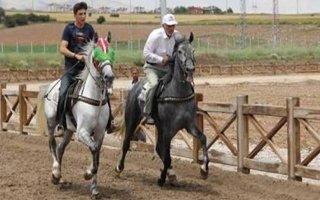 Rahvan At Yarışları Erzurum'da Yapılacak