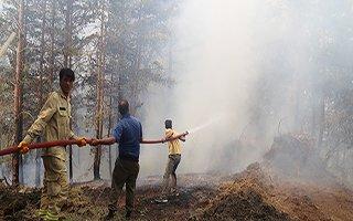 Oltu'nun ormanları 3 gündür yanıyor