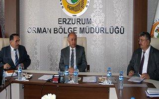 Erzurum'a 20 milyon ağaç dikilecek