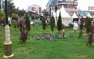 """Yakutiye Kent Meydanı Yada """"Kuş Cenneti"""""""