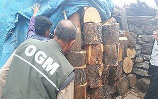 Orman koruma ekipleri kaçakçılara göz açtırmıyor