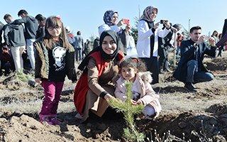 Erzurum'da 170 Bin Fidan Toprakla Buluştu