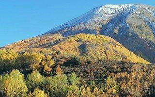 Erzurum'da rengarek sonbahar