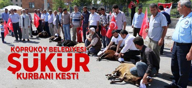 Köprüköy Belediyesi Şükür Kurbanı Kestirdi