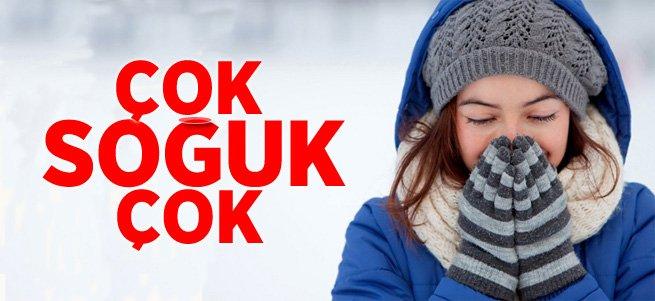 Erzurum'da soğuk hava göleti dondurdu