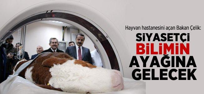 Bakan Çelik Erzurum'da hayvan hastanesini açtı