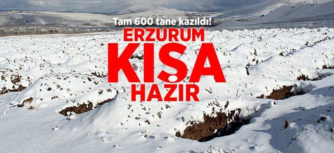Erzurum'da kış için toplu mezar kazılıyor