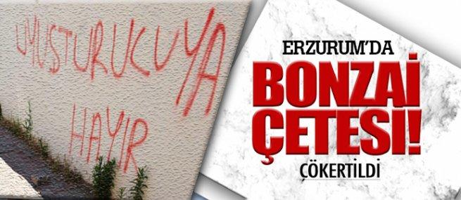Erzurum'da 17 kişilik 'bonzai çetesi' çökertildi