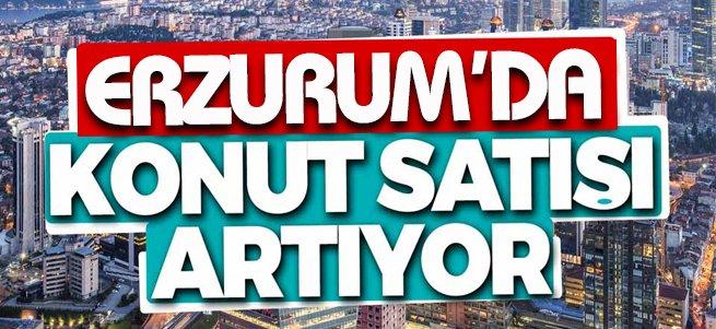 Erzurum'da konut satışları arttı