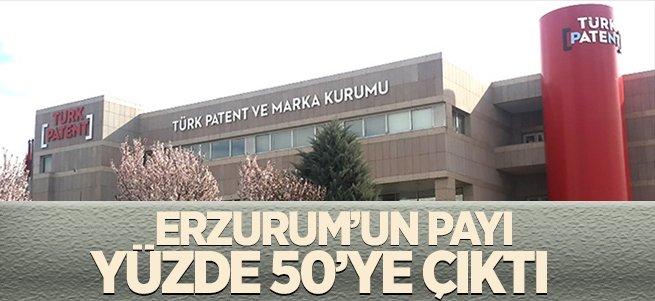Erzurum'un payı yüzde 50'ye çıktı