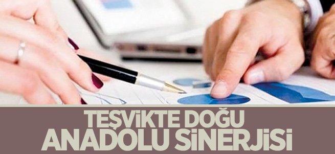Teşvikte Doğu Anadolu sinerjisi