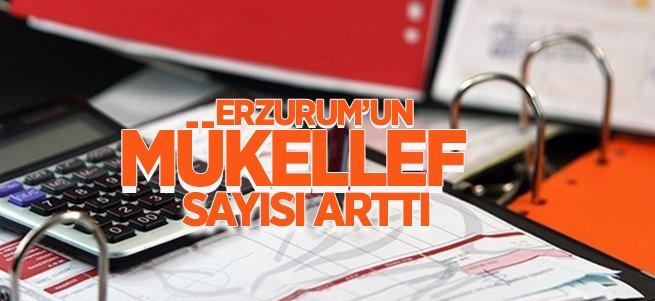 Erzurum'un Mükellef Sayısı Arttı
