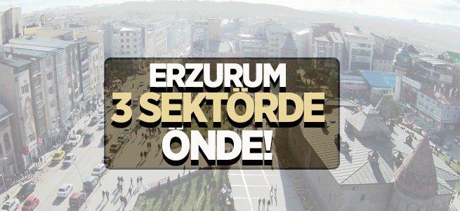 Erzurum 3 sektörde önde