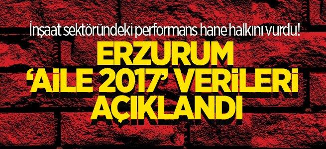 Erzurum 'Aile 2017' verileri açıklandı