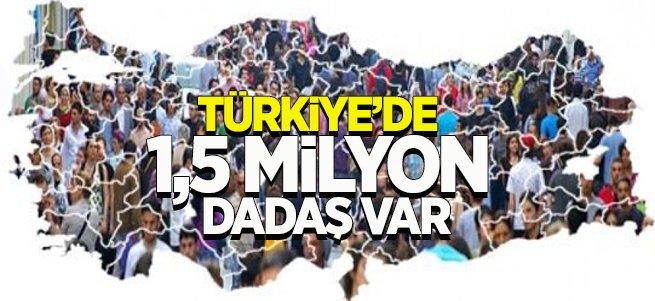 Türkiye'de 1,5 Milyon Dadaş Var!