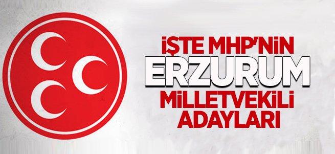 İşte MHP'nin Erzurum Milletvekili Adayları