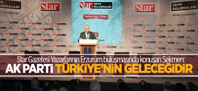 Sekmen: Ak Parti Türkiye'nin Geleceğidir