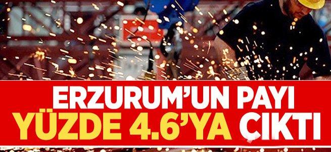 Erzurum'un payı yüzde 4.6'ya çıktı