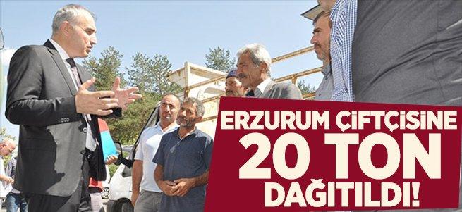 Erzurum çiftçisine 20 ton tritikale tohumu dağıtıldı