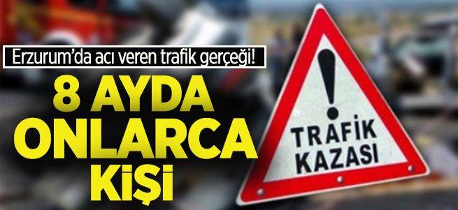 Erzurum'da 8 ayda 40 kişiyi kaybettik