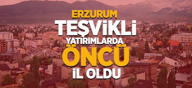 Erzurum teşvikli yatırımlarda öncü il