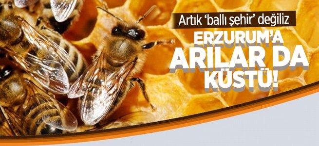 Erzurum artık ballı şehir değil!