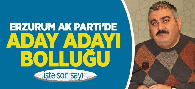 Erzurum AK Parti'de aday adayı bolluğu