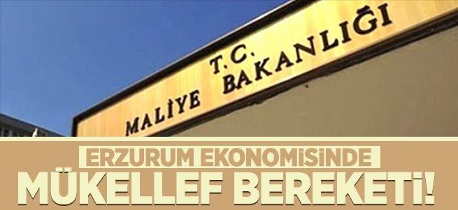 Erzurum ekonomisinde mükellef bereketi