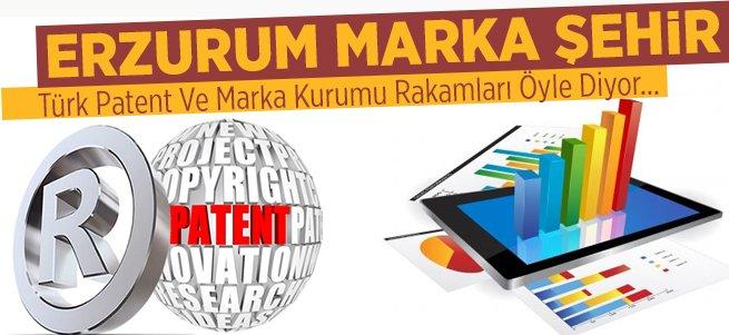 Erzurum 11 ayda 160 marka çıkardı