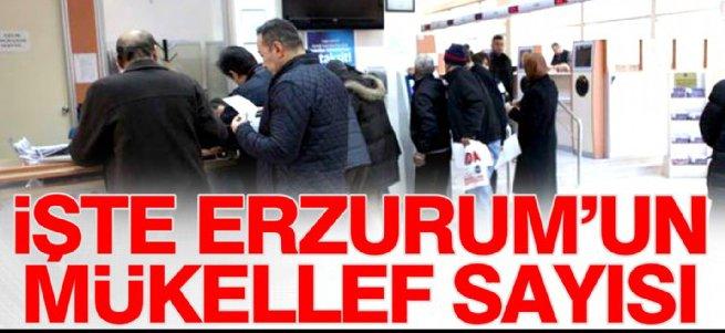 İşte Erzurum'un mükellef sayısı