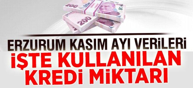 İşte Erzurum'da kullanılan kredi miktarı