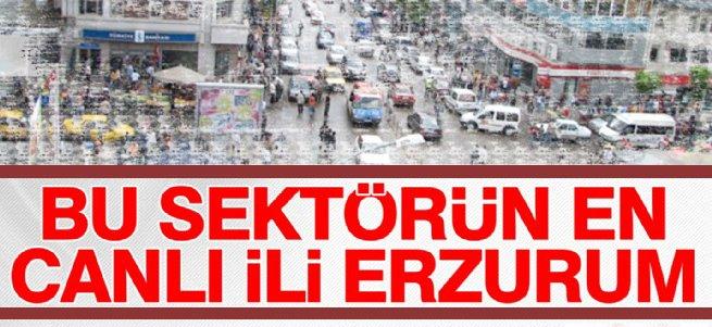 Bu Sektörün en canlı ili Erzurum