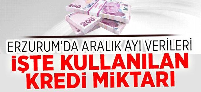 İşte Erzurum'un kullandığı kredi miktarı