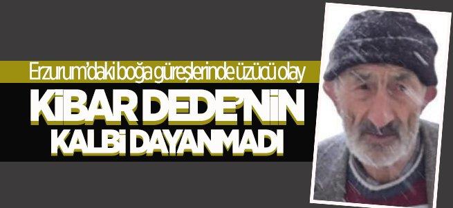 Erzurum'daki boğa güreşlerinde acı olay!