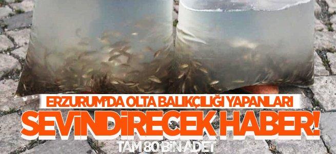 Erzurum'da olta balıkçılığı yapanlara sevindirecek haber!