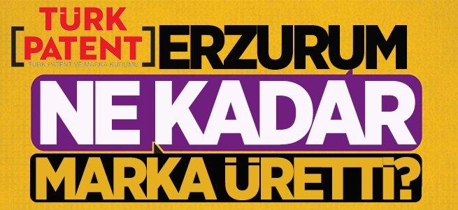 Erzurum 9 ayda 138 marka üretti