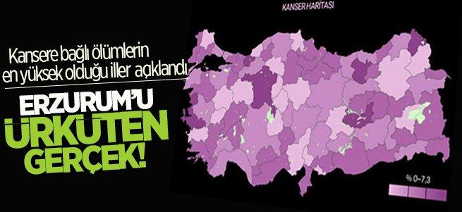 Erzurum'da ürküten kanser gerçeği!